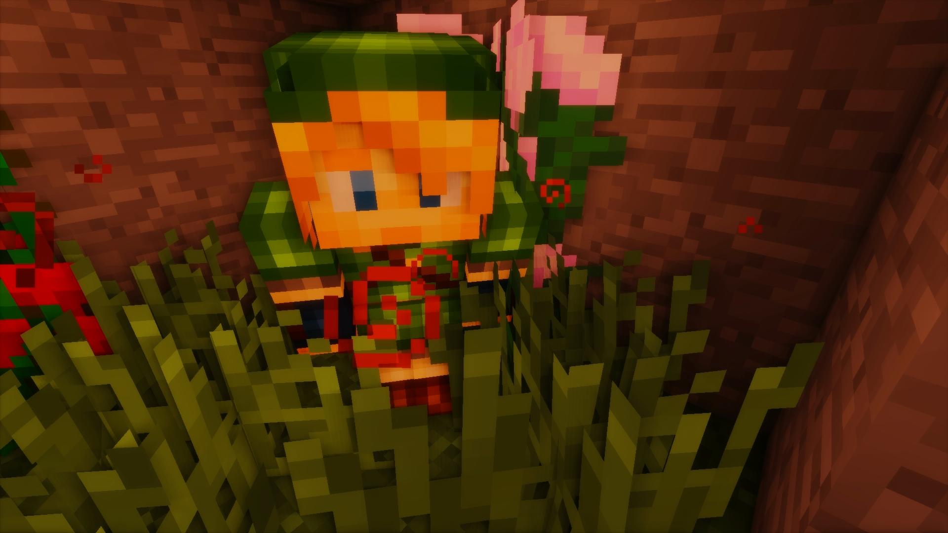 Link est de retour !